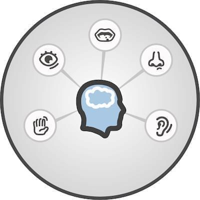 Duyusal İşlemleme ve SAS Metodu