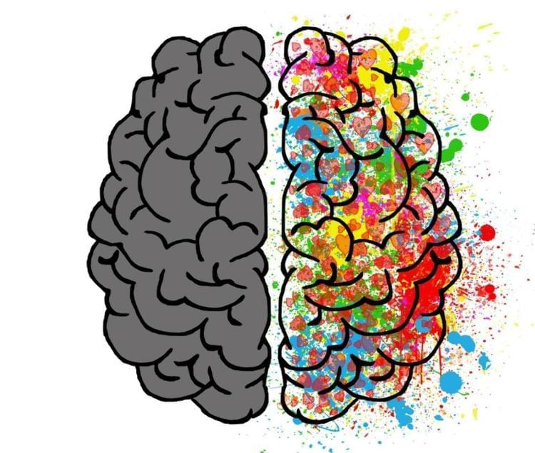 Synchronising the two sides of the brain