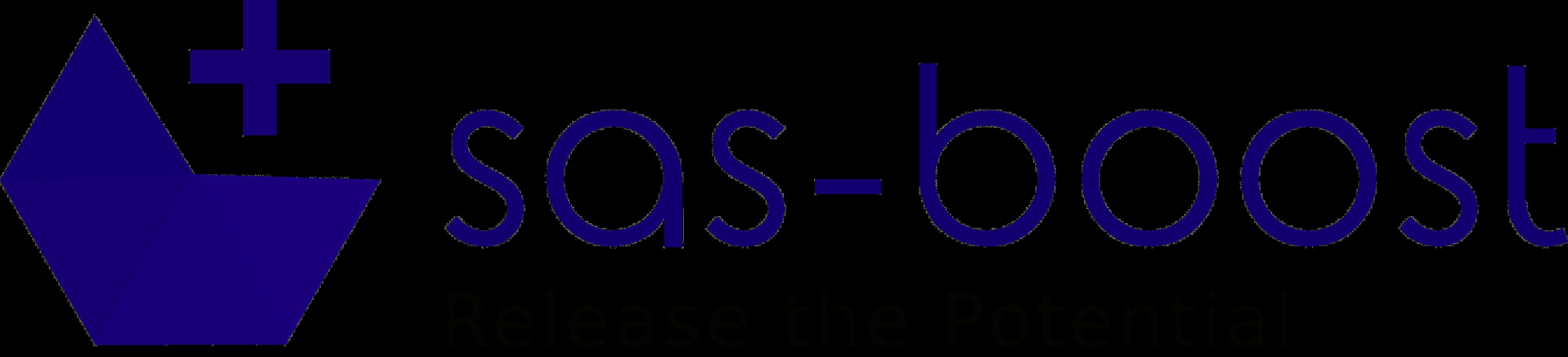 SAS Boost
